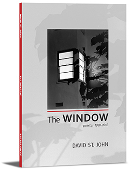 The Window book cover
